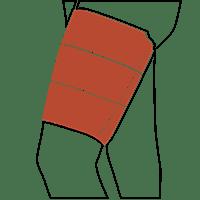 Thigh | الفخذ