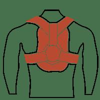 Shoulder & Clavicle | الكتف و الترقوة